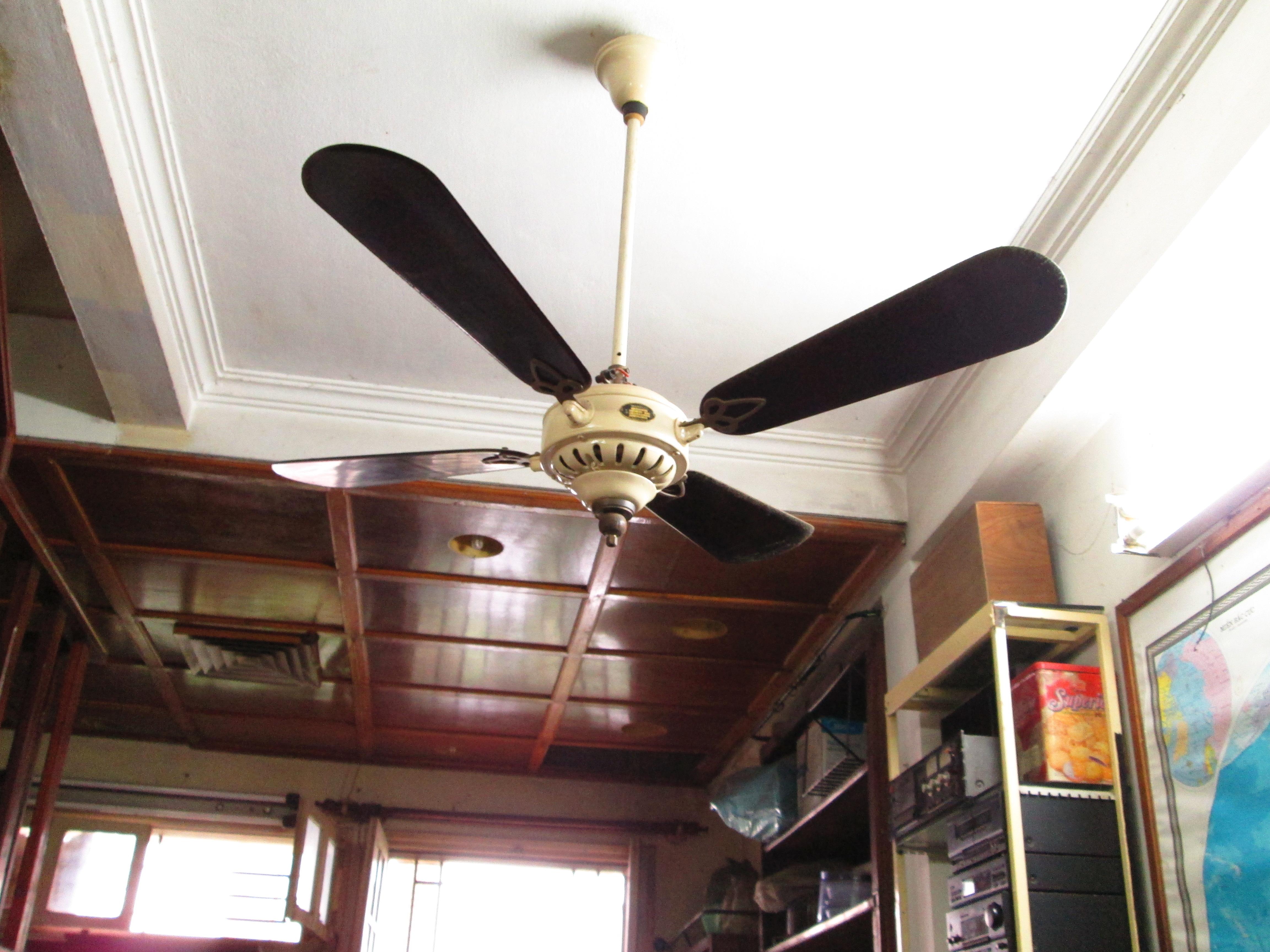 1920 -1930C. Century Antique Marelli fan