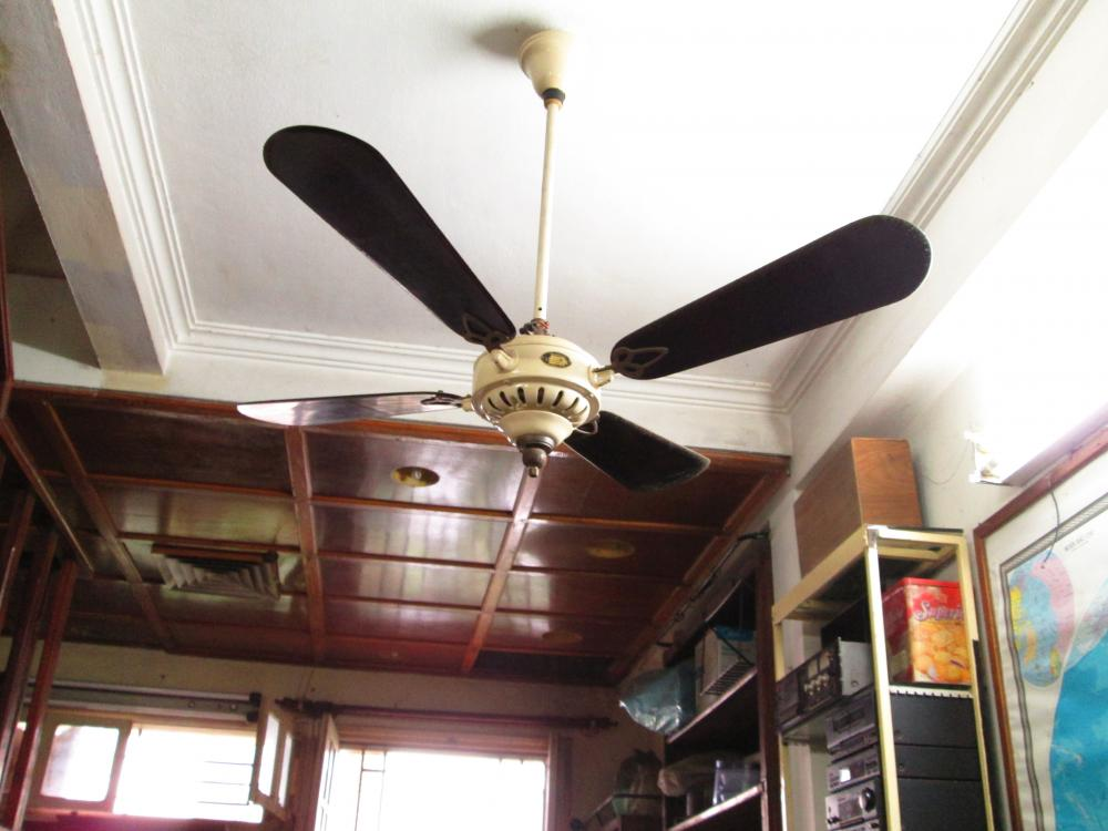 1920 -1930C. Century Antique Marelli fan